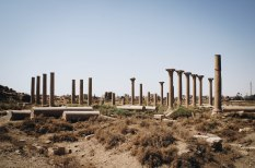 Photo: Shangyun Shen, the ruins of the colossal Corinthian columns of the basilica at Al–Ashmunayn that was once the famous Hermopolis Magna which probably date back to the first half of the first century.