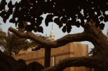 Photo: Shangyun shen, the Virgin Tree and the minaret of the Mosuque of Mary.