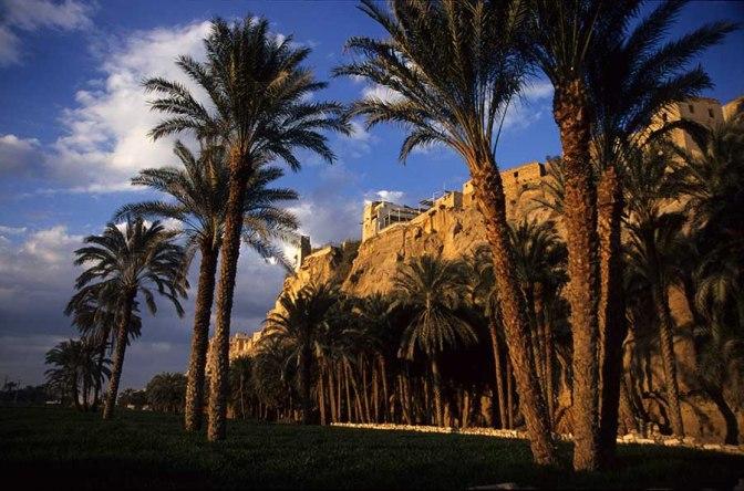 Gabal al-Tayr